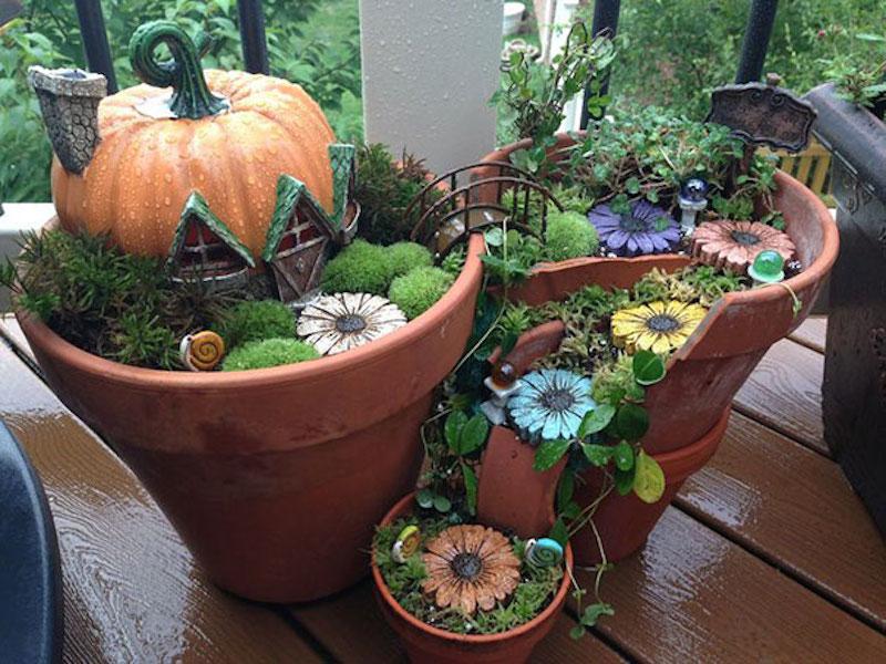 Мини сад в горшке своими руками фото пошагово