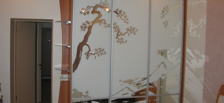 шкафы-купе дизайн фасадов фото