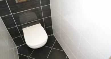 дизайн туалетной комнаты маленького размера фото