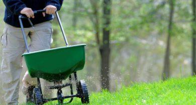 подкормка газона весной